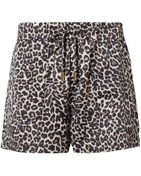 Anine Bing Ashley Leopard-print Silk-charmeuse Pajama Shorts Animal Print - Multicolor