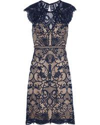 Catherine Deane Melody Open-back Macramé Lace Dress Navy - Blue