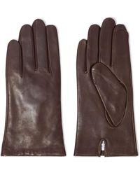 Iris & Ink Celine Leather Gloves - Brown