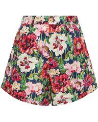 Onia Floral-print Cotton Shorts - Multicolour