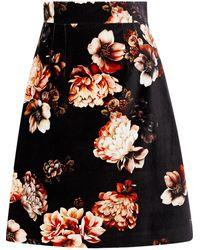 Dolce & Gabbana Floral-print Stretch-cotton Velvet Skirt - Black