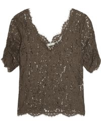 Joie Nevina Guipure Lace Top - Brown