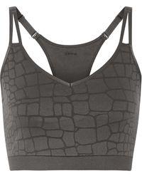 Yummie By Heather Thomson - Mia Stretch Jacquard-knit Sports Bra - Lyst