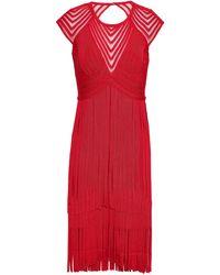 Hervé Léger Hervé Léger Fringe Tulle-paneled Cutout Bandage Dress Red