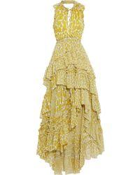 Diane von Furstenberg Carissa Asymmetric Tiered Leopard-print Silk-georgette Maxi Dress - Green