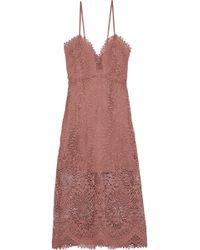 Marissa Webb - Woman Dillon Guipure Lace Midi Dress Antique Rose - Lyst