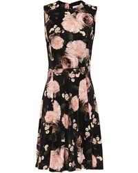 Erdem Dylanne Flared Floral-print Jersey Dress Black