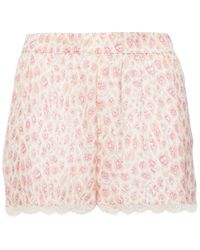 Stella McCartney Tana Snooping Lace-trimmed Leopard-print Stretch-silk Satin Pyjama Shorts Pastel Pink