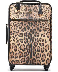 Dolce & Gabbana Leopard-print Textured-leather Suitcase Animal Print - Multicolor