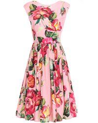 Dolce & Gabbana Flared Gathered Floral-print Cotton-poplin Dress Baby Pink