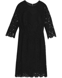 Dolce & Gabbana - Embroidered Corded Lace Dress - Lyst