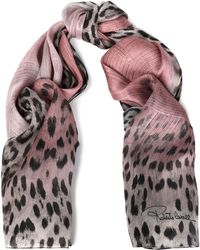 Roberto Cavalli - Frayed Cashmere-gauze Scarf Animal Print - Lyst