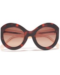Zanzan Round-frame Tortoiseshell Acetate Sunglasses Black