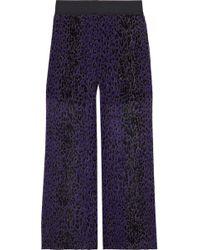 Anna Sui Leopard-print Plissé Silk-georgette Wide-leg Pants Purple