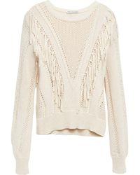 Autumn Cashmere Fringed Crochet-knit Cotton Jumper - Natural