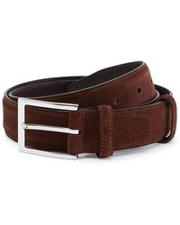 Carmina Brown Polo Suede Belt