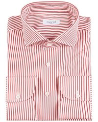 Marol White And Red Bengal Stripe Cotton Shirt