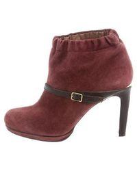 Vanessa Bruno - Suede Ankle Boots Burgundy - Lyst