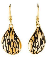 Diane von Furstenberg - Dew Drop Earrings Gold - Lyst