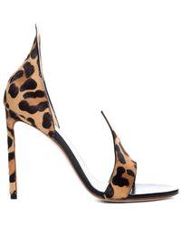 Francesco Russo Leopard Sandals - Multicolor