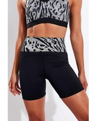 adidas Believe This High Waisted Shorts - Blue