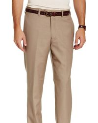Louis Raphael Classic Fit Solid Double Pleated Wool Dress Pants - Brown