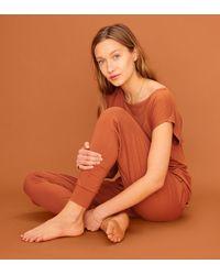 Thirdlove Knit Jogger - Orange