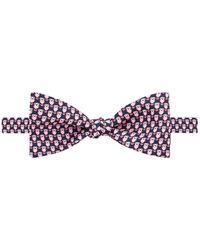 Thomas Pink - Owl Print Bow Tie - Lyst