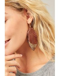 Three Bird Nest Got A Lot To Say Leather Leaf Earrings - Brown