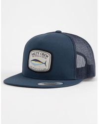 sale retailer 650ab ab3ee Patagonia Great Pacific Iron Works Roger That Baseball Hat in Natural for  Men - Lyst