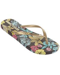 Ipanema Slippers Paraiso Brown/gold - Bruin