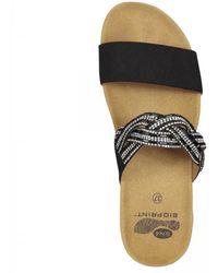 Scholl Slipper Women Diadema Black-schoenmaat 39 - Zwart