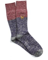 Mr Gray - Colour Block Socks With Butterfly - Lyst