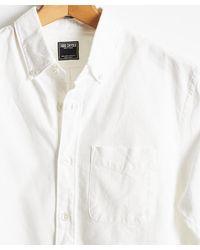 Todd Synder X Champion Button-down Collar Shirt In White Poplin