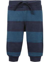 Tom Tailor Baby Gestreifte Jogginghose - Blau