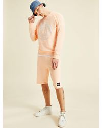 Tommy Hilfiger One Planet Sweatshirt Met Logo - Roze
