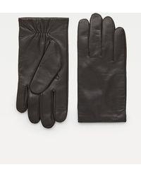 Tommy Hilfiger Gants en cuir à poignets élastiques - Marron