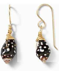 Tommy Bahama - Spotted Shell Earrings - Lyst