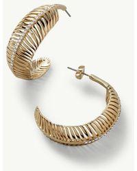Tommy Bahama - Swarovski® Palm Frond Earrings - Lyst