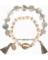 Tommy Bahama - Double Strand Shell Bracelet - Lyst