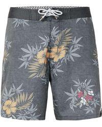 Globe - Grey Faded Flower Print Shorts* - Lyst