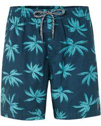 Globe - Blue Palms Print Shorts* - Lyst