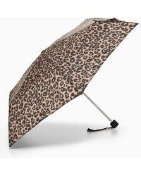 TOPSHOP Leopard Print Umbrella - Multicolor