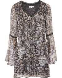 Wyldr - Show Me The Way Snake Print Tea Dress By - Lyst