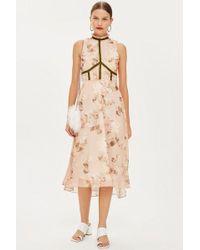 Hope and Ivy - velvet Trim Skater Dress By Hope & Ivy - Lyst