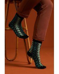 King Louie 60s Aberdeen Socks 2-pack - Meerkleurig