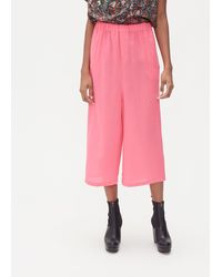 Anntian Straight Pant - Pink