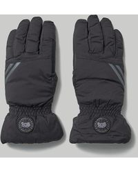 Canada Goose Hybridge Gloves - Black