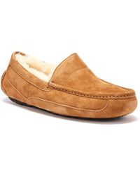 UGG UGG Ascot Suede Mens Chestnut Brown Slippers