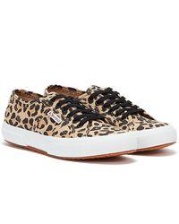 Superga 2750 Cotu Leopard Print / White Trainers - Brown